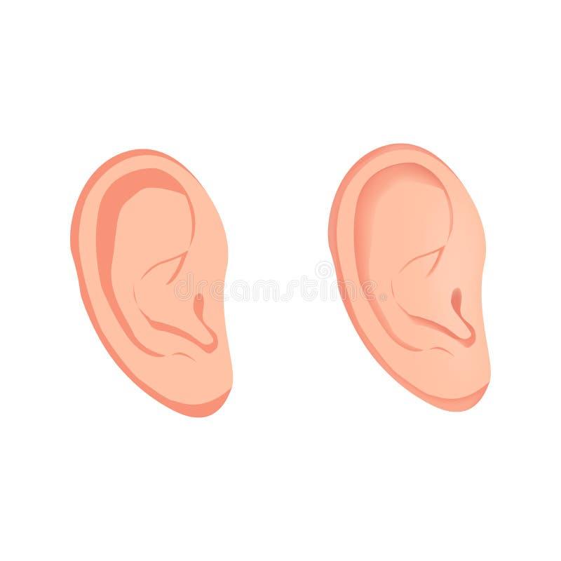 Flache Ikone des Ohrs, menschliches Organ, Anatomie stock abbildung