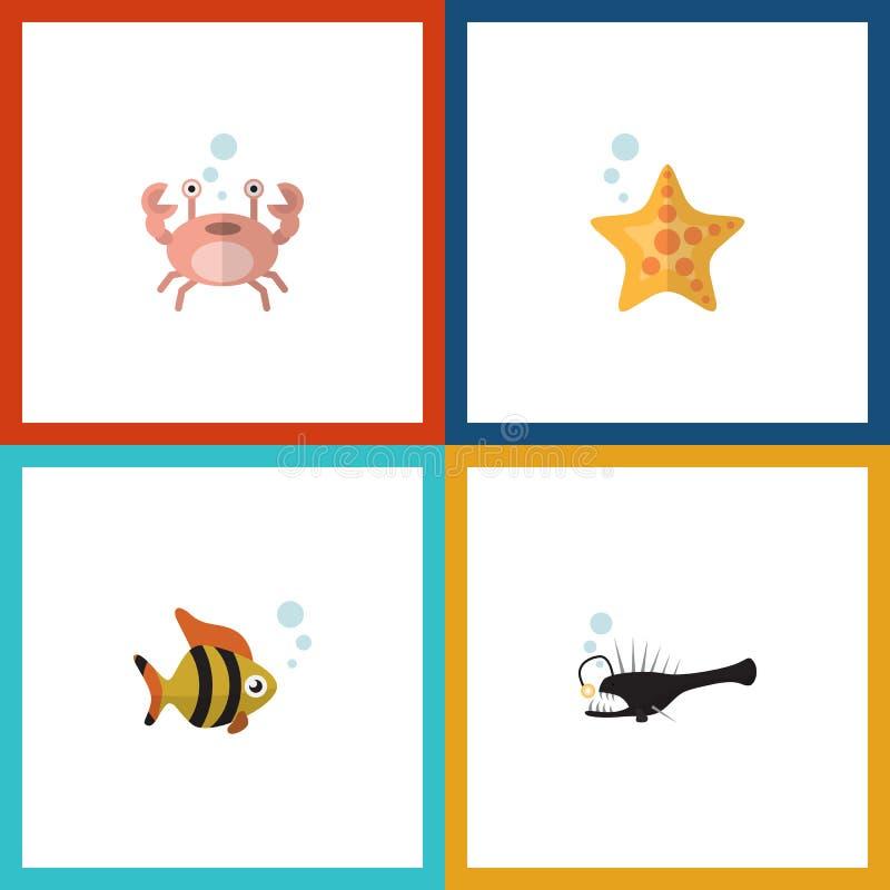 Flache Ikone Marine Set Of Fish, Meeresfrüchte, Krebs und andere Vektor-Gegenstände Schließt auch Stern, Hummer, Krabben-Elemente vektor abbildung