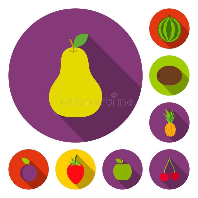 Flache Ikonen der verschiedenen Früchte in der Satzsammlung für Design Früchte und Vitamine vector Netzillustration des Symbols a vektor abbildung