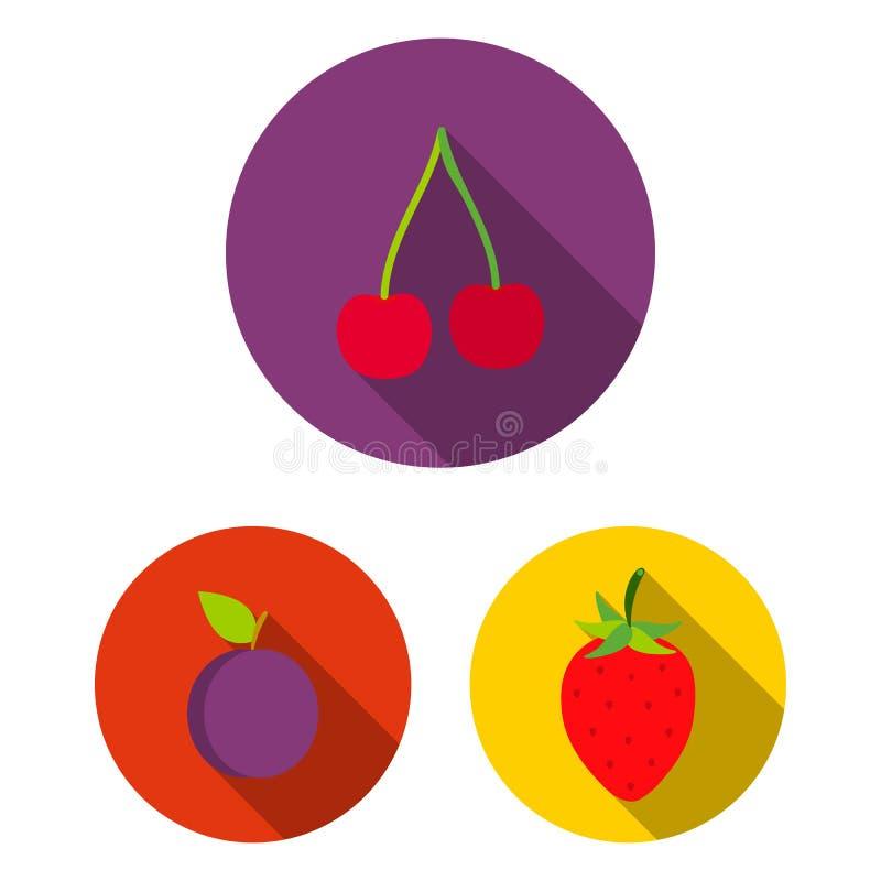 Flache Ikonen der verschiedenen Früchte in der Satzsammlung für Design Früchte und Vitamine vector Netzillustration des Symbols a stock abbildung