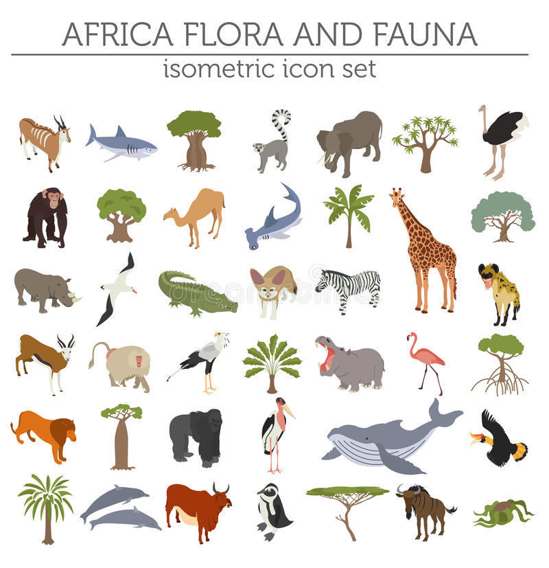 Flache isometrische Afrika Flora und Fauna 3d zeichnen Erbauerelement auf vektor abbildung