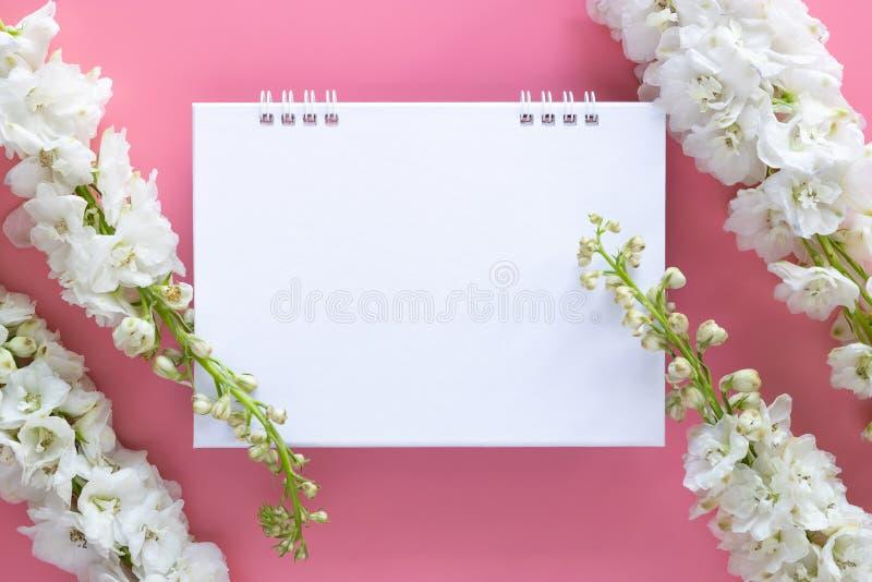 Flache Lage des Schreibtisch-Spiralenkalenders des leeren Papiers verzieren mit der weißen Blume, die auf rosa Hintergrund lokali lizenzfreie stockfotografie