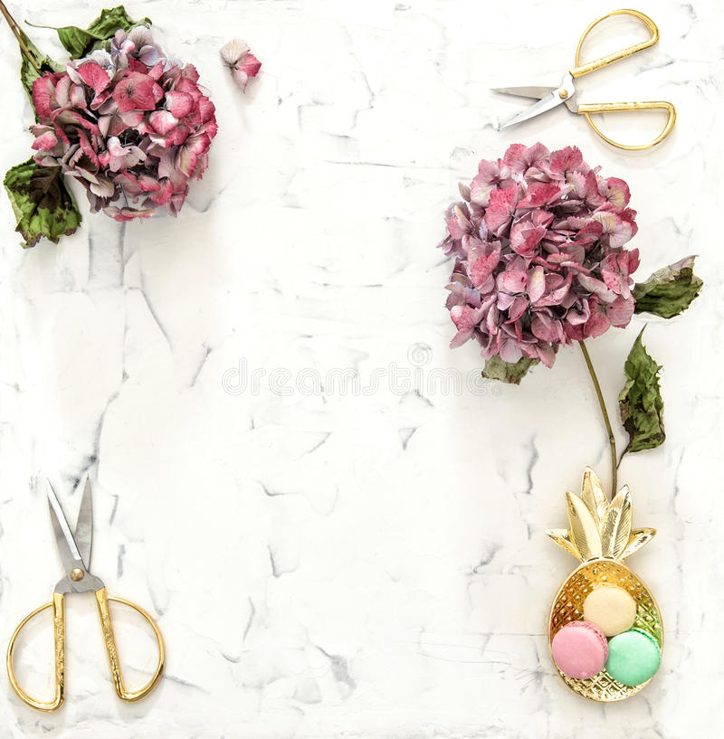 Flache Lage mit Hortensia blüht macarons Dekoration stockbilder