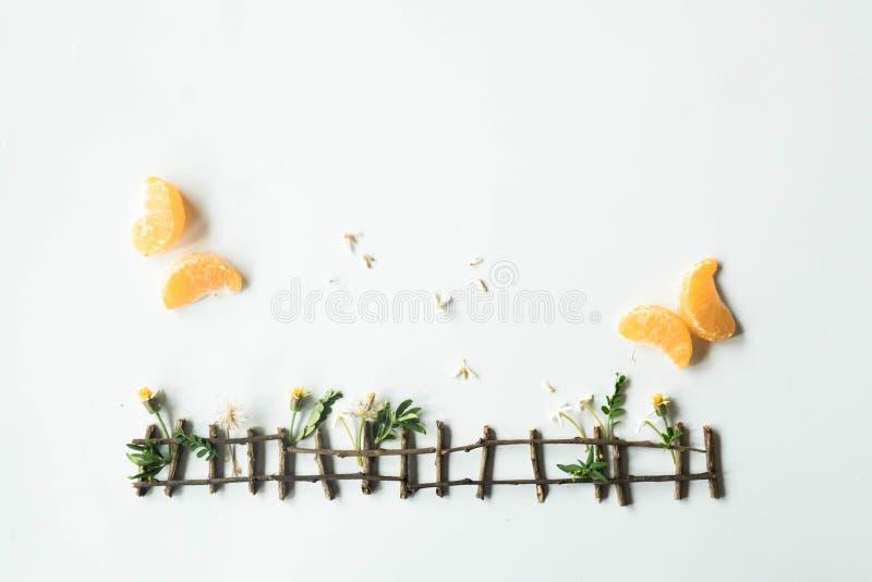 Flache Lageeinrichtung gemacht von der Tangerine und vom grünen Gras auf weißem Hintergrund stockfotos