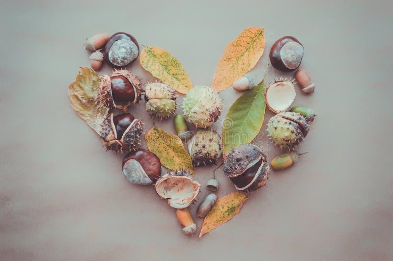 Flache Lagezusammensetzung für Herbstferien Danksagungs-Grußkarten Eicheln, Blätter, Kastanien in Form eines Herzens auf dem kra lizenzfreie stockbilder