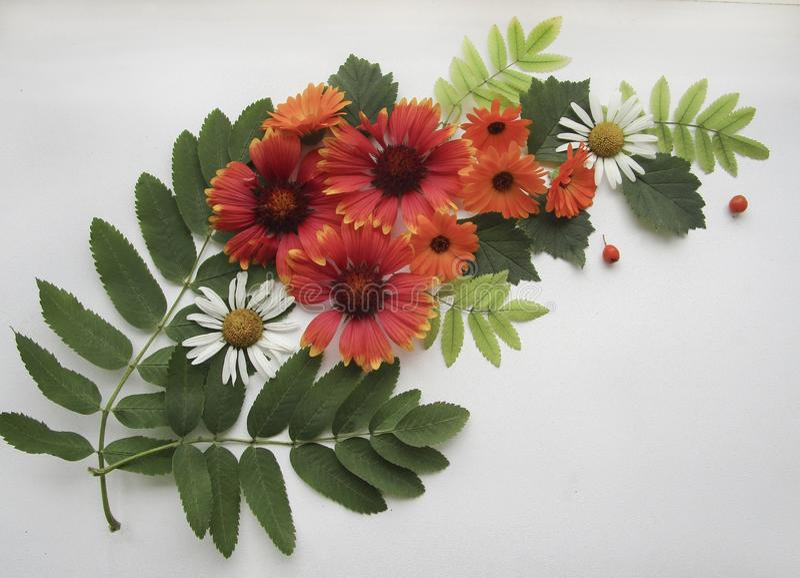 Flache Lagezusammensetzung von Gaillardia, Calendula, Kamille blüht, ashberry und Eberesche verlässt in der Form des Blumenstrauß stockbild