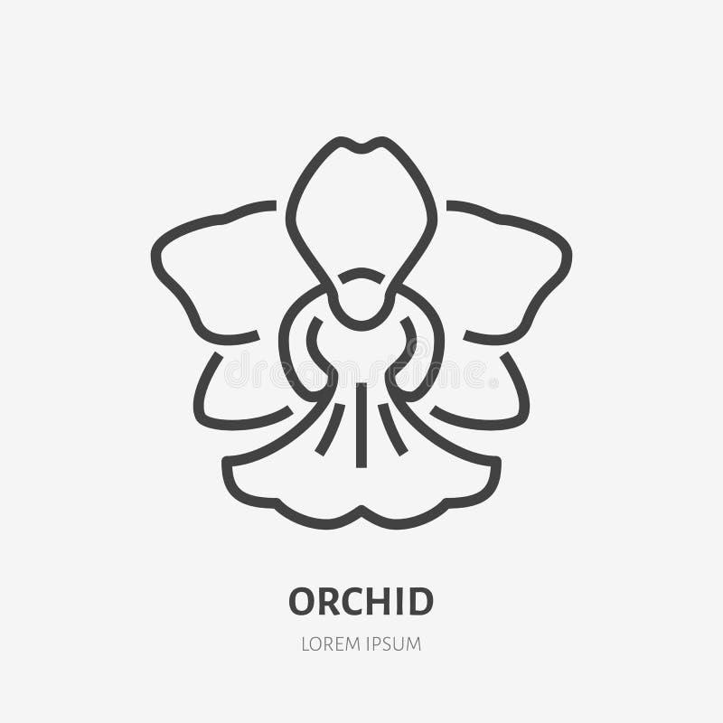 Flache Linie Ikone der Orchidee Vector Zeichen der Blüte, tropisches Blumenentwurfslogo stock abbildung