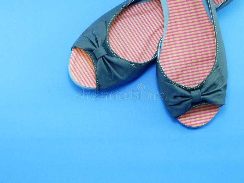 Flache Schuhe der Paardamen stockfotos
