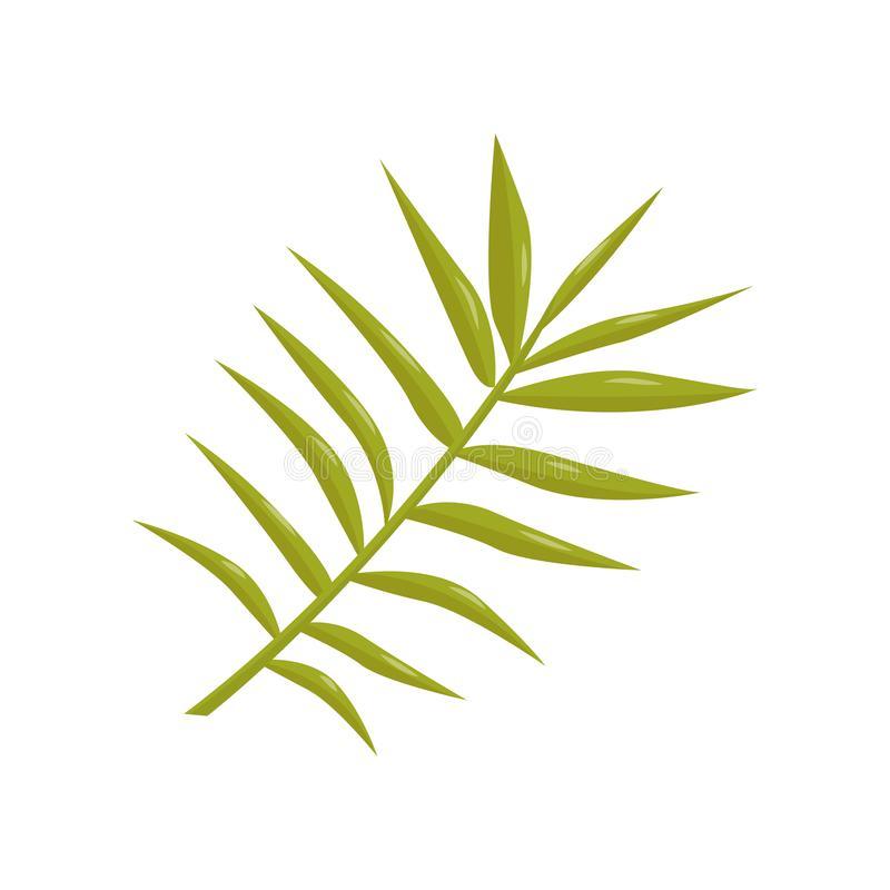 Flache Vektorikone des dünnen Stiels mit kleinen Blättern Hellgrüne tropische Anlage Botanisches Thema Element für Flieger oder vektor abbildung