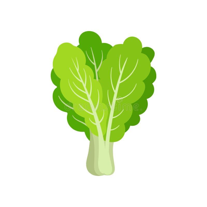 Flache Vektorikone des frischen Kohls Belaubtes grünes Gemüse Gesunder Bestandteil für vegetarischen Salat Biologisches Lebensmit lizenzfreie abbildung