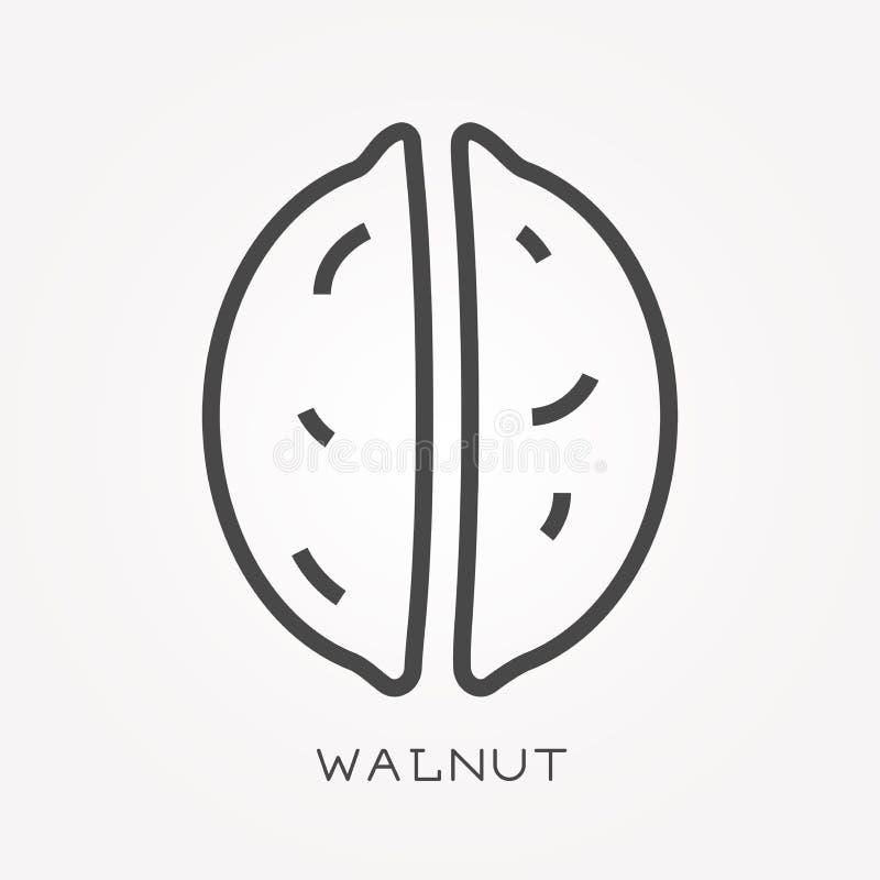 Flache Vektorikonen mit Walnuss lizenzfreie abbildung