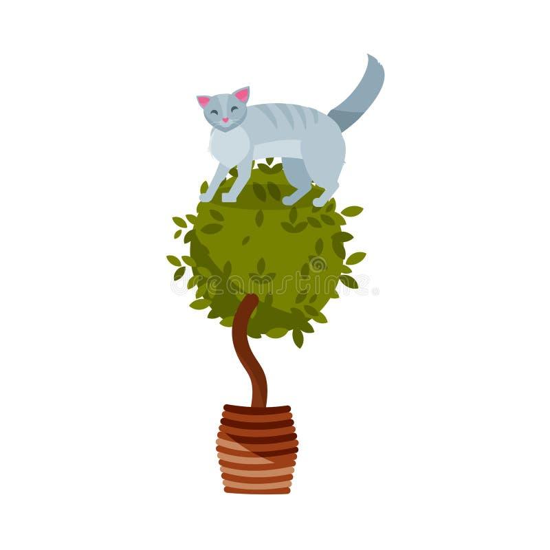 Flacher Charakter der schuldigen Katze Farb Nette freche spielerische Katzenschaden houseplats Kätzchenspiel mit Zimmerpflanze im stock abbildung