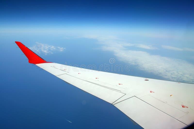 Flacher Flügel lizenzfreie stockfotografie
