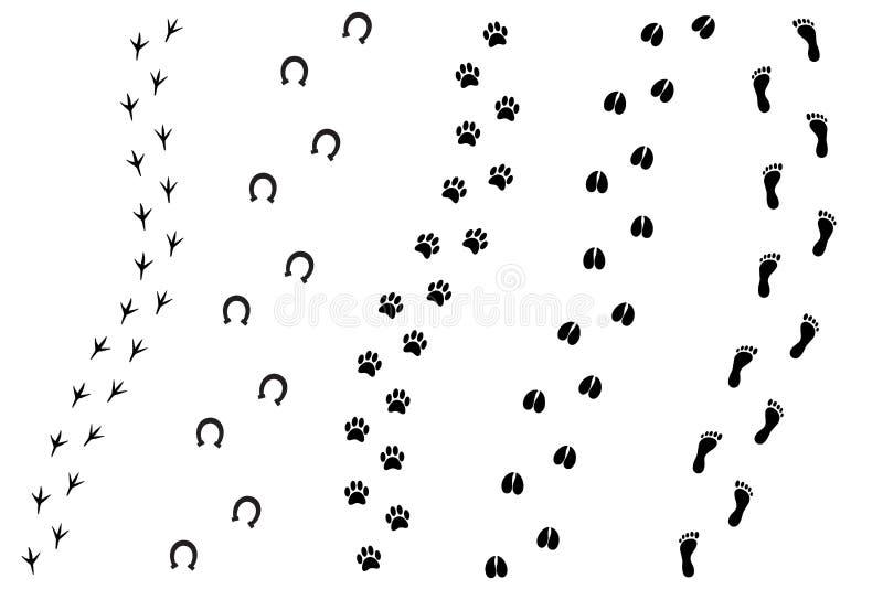 Flacher Karikatursatz des Vektors des schwarzen unterschiedlichen Tieres und des Druckes des menschlichen Fußes lizenzfreie abbildung