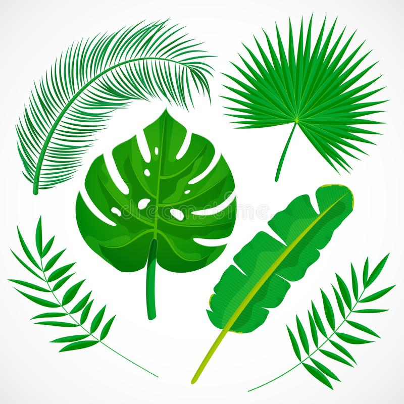 Flacher Palmblattsatz vektor abbildung