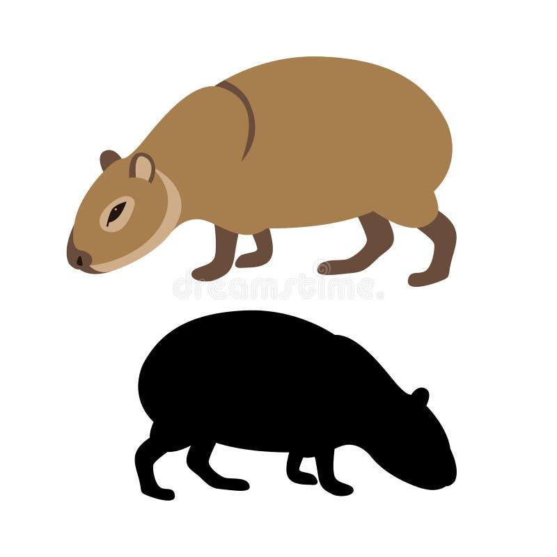 Flaches Artschattenbild der Capybaravektorillustration vektor abbildung