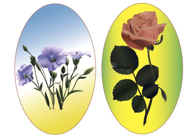 Flachs und Rose stockfoto