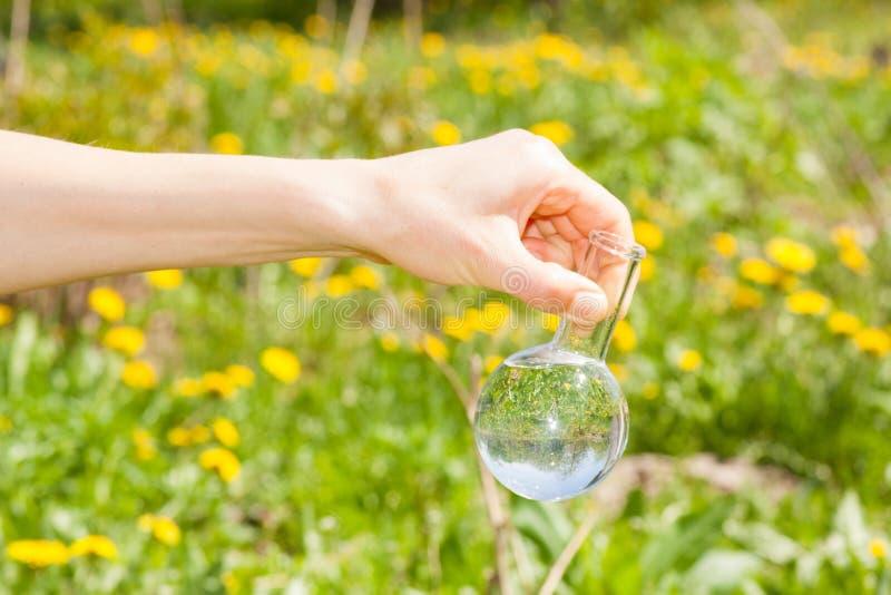 Flacon avec l'eau claire et les plantes vertes images stock