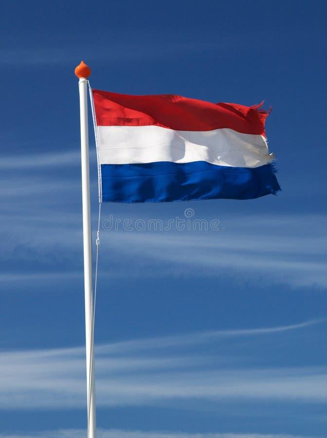 Fladderende Nederlandse vlag royalty-vrije stock foto