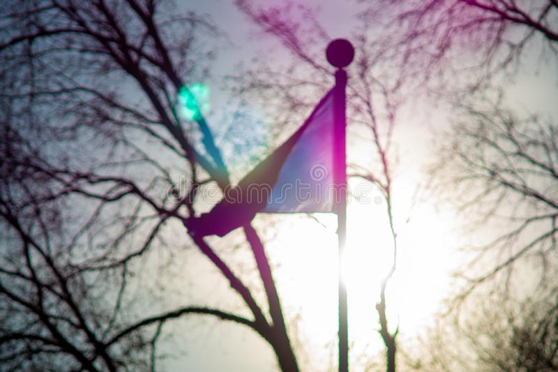 Flag blowing in the wind amidst trees stock photography