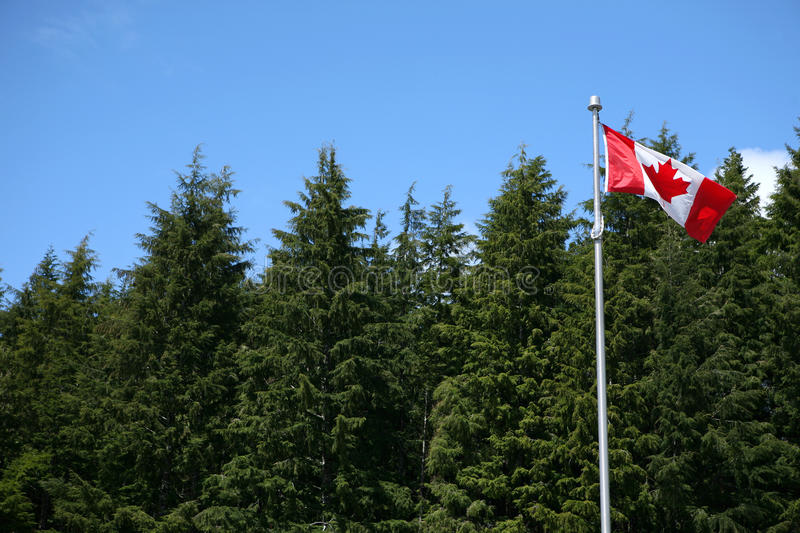 Download Flag of canada stock image. Image of sunlight, trees - 27645747