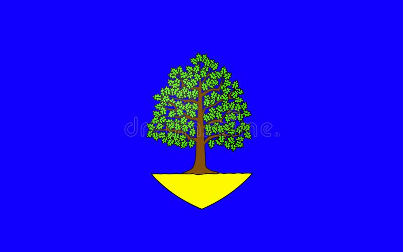 Flag of Chateau-Chinon, France. Flag of Chateau-Chinon is a commune in the Nievre department in France. It is a sub-prefecture of the department vector illustration