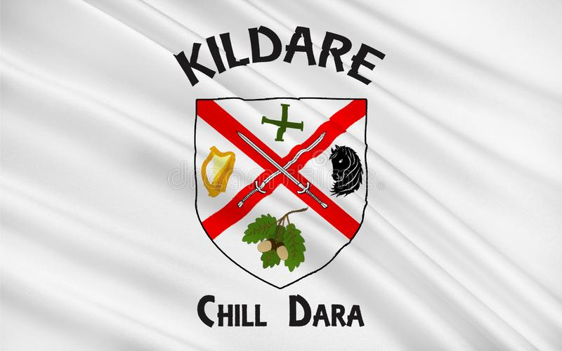 Flag of County Kildare is a county in Ireland. It is located in the province of Leinster and is part of the Mid-East Region. It is named after the town of vector illustration