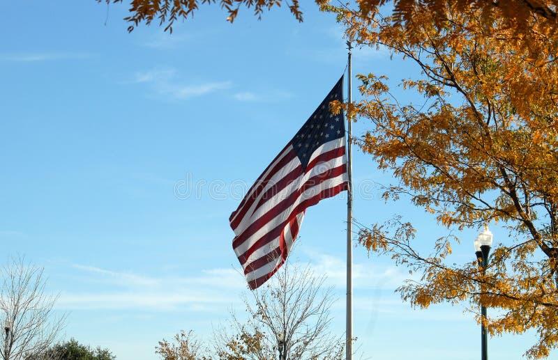 Flag in Fall stock photos