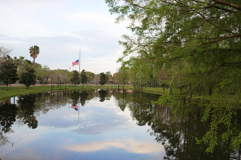 Flag flying at half mast on a university campus. Peaceful setting of a flag flying at half staff is reflected in the pond below stock images