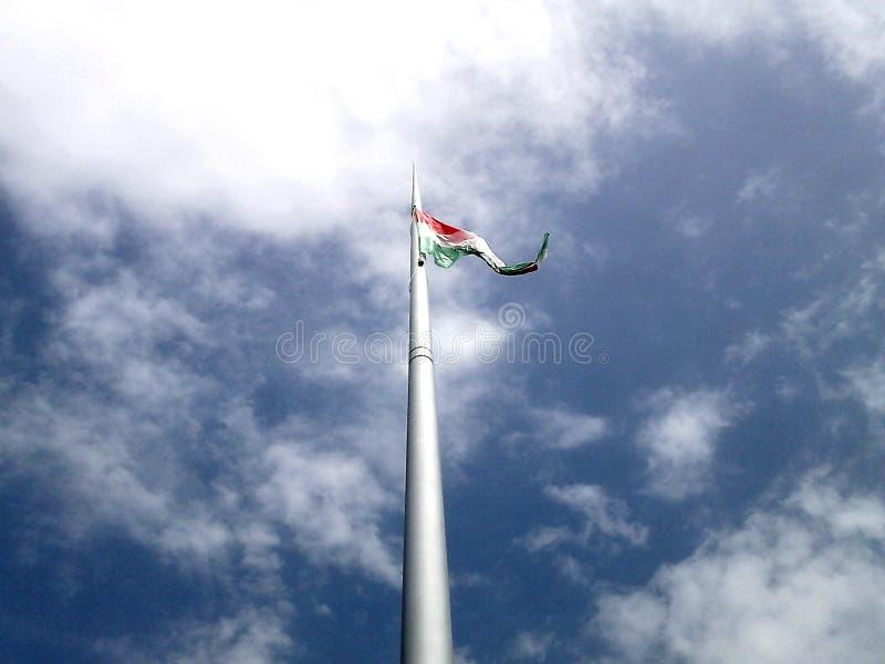 Flag of Hungary royalty free stock photos