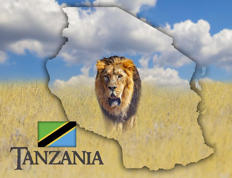 Flag Map of Tanzania on which is a picture of a lion. There is the text of Tanzania and flag. There is It is national african royalty free stock photography