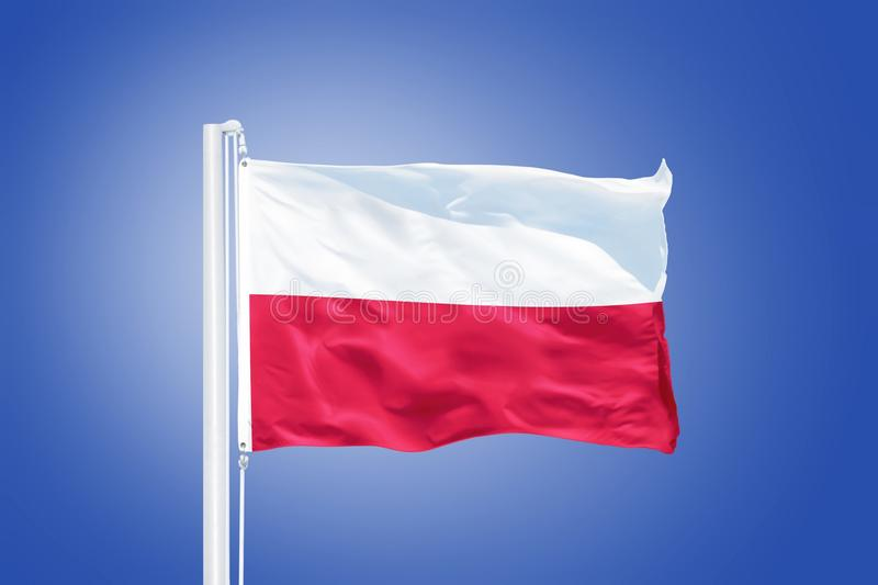 Flag of Poland flying against a blue sky.  royalty free stock image