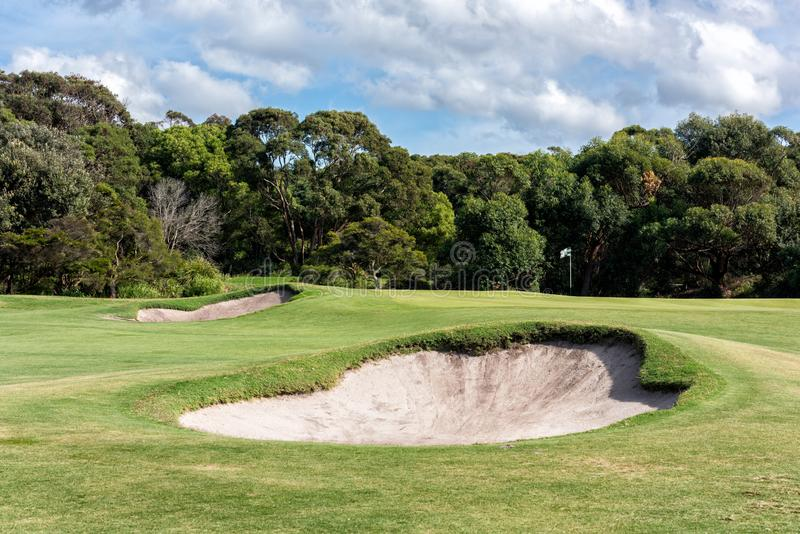 Sand bunkers in front of putting green at golf course. The flag of the putting pin flaps in the wind on a putting green behind to large sand bunkers at a golf stock image