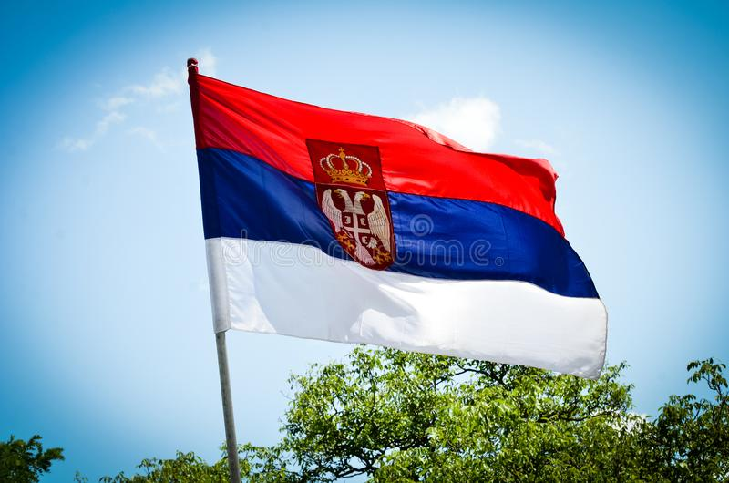 Flag of Serbia in the sun royalty free stock photos