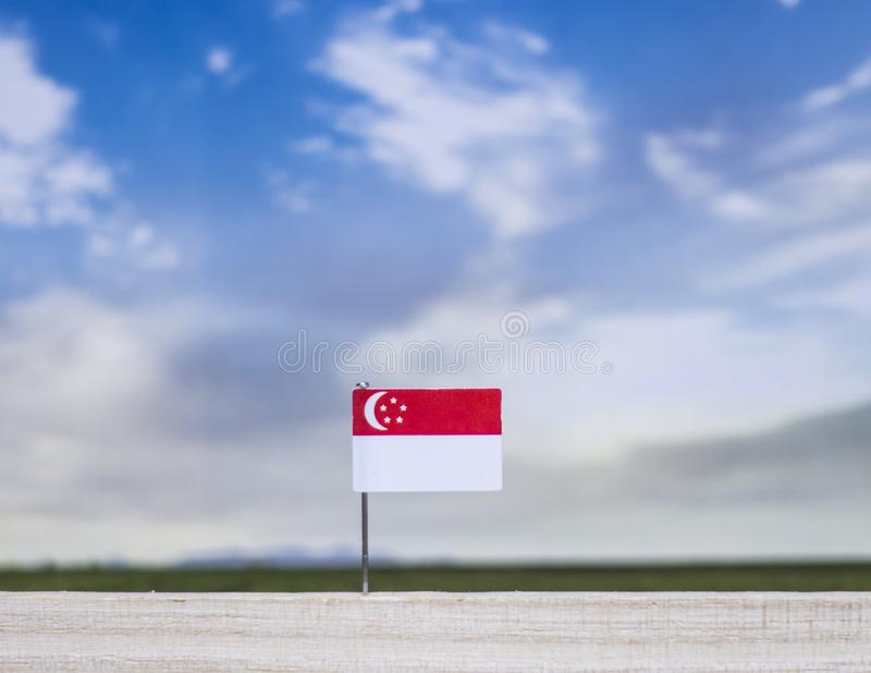 Flag of Singapore with vast meadow and blue sky behind it. stock images