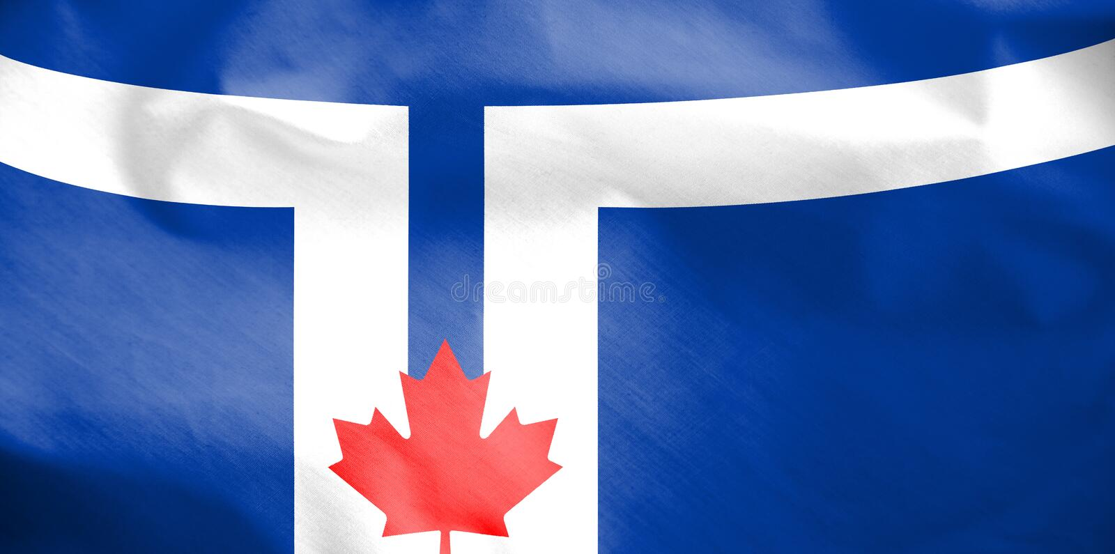 Flag of Toronto, Canada. royalty free illustration