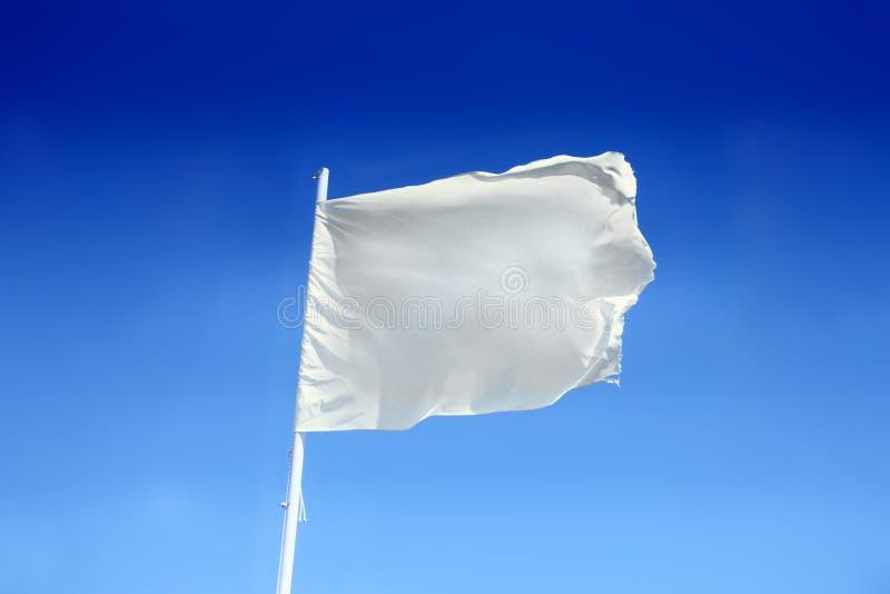 flag white arkivfoton
