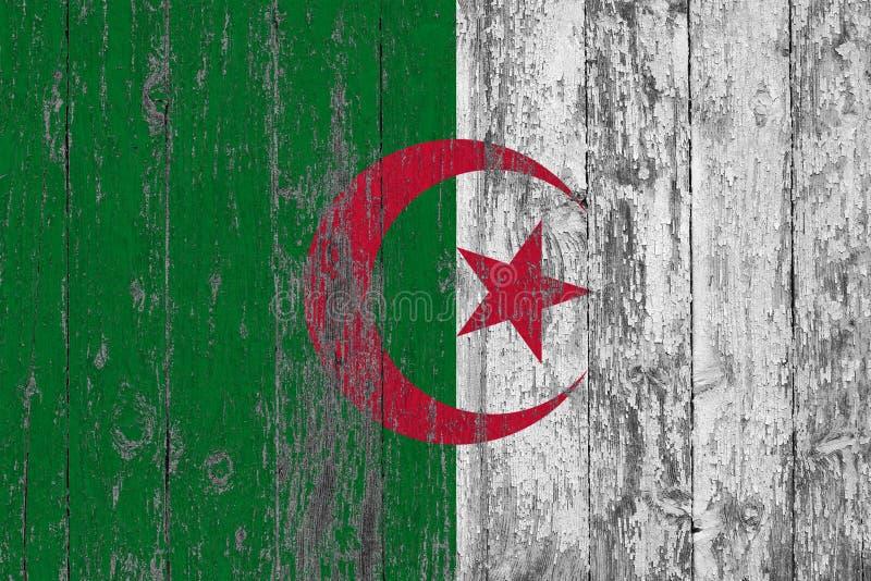 Flaga Algieria malował na przetartym za drewnianym tekstury tle obraz stock