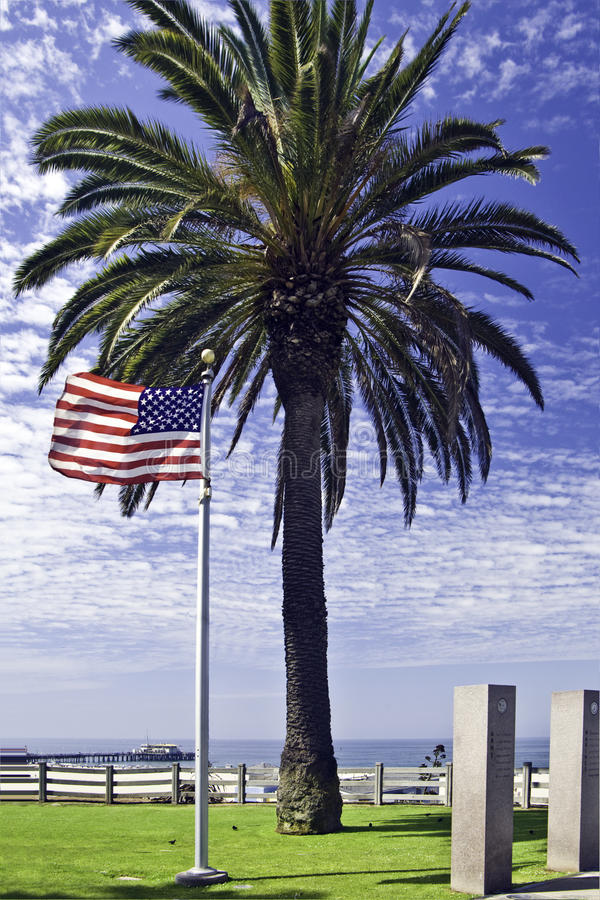 flaga amerykańskiej drzewko palmowe zdjęcie royalty free
