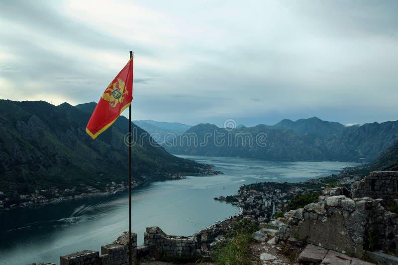 Flaga brać w Kotor Montenegro Miasto i Kotor zatoka możemy widzieć w tle obraz royalty free