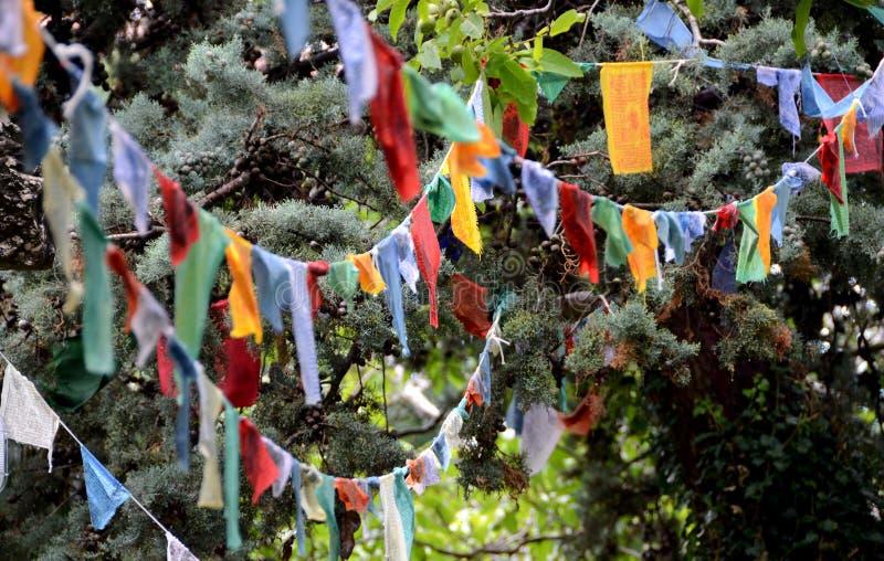 flaga buddyjskie modlitewne kathmandu zdjęcie stock