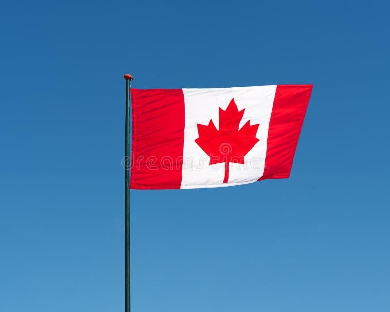 Flaga Kanada falowanie w wiatrze, niebieskiego nieba tło obrazy stock