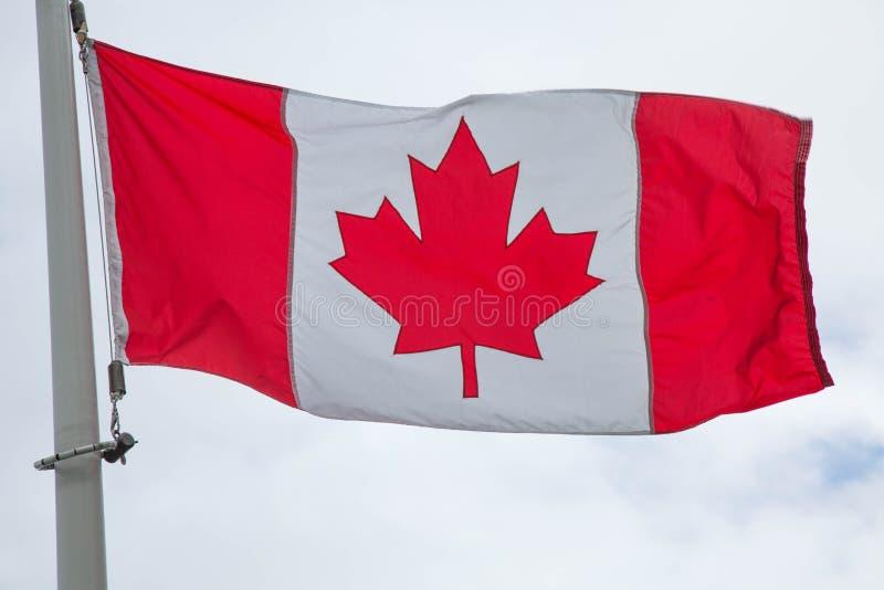 flaga kanady krajowe obraz stock