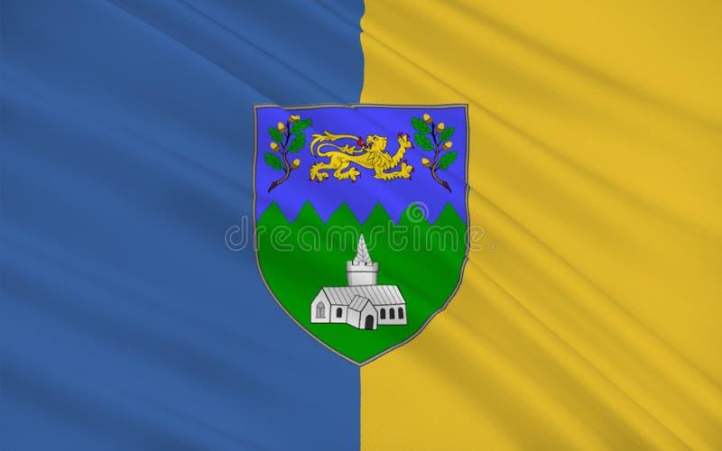 Flaga okręg administracyjny Wicklow jest okręgiem administracyjnym w Irlandia ilustracja wektor