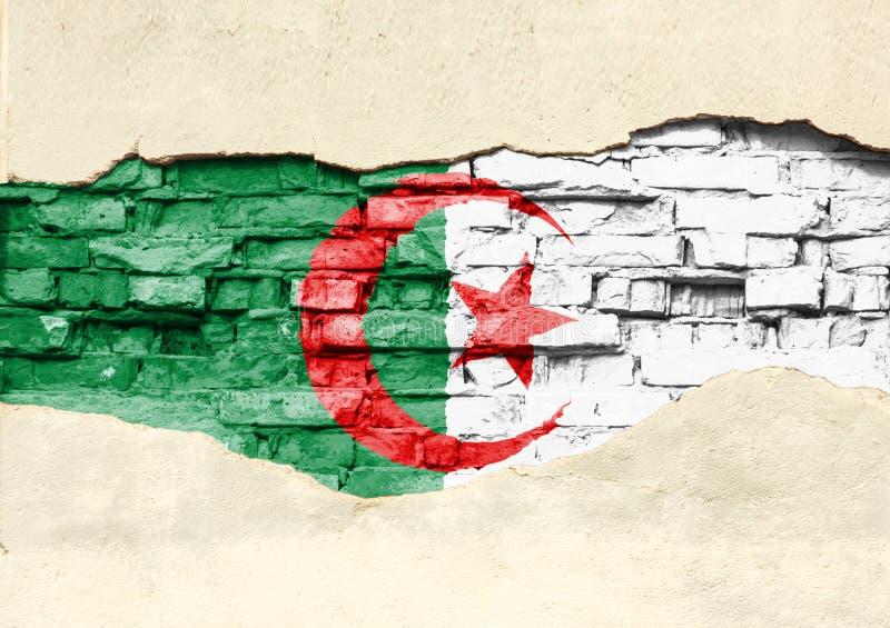 Flaga państowowa Algieria na ceglanym tle Ściana z cegieł z stronniczo zniszczonym tynkiem, tłem lub teksturą, fotografia stock