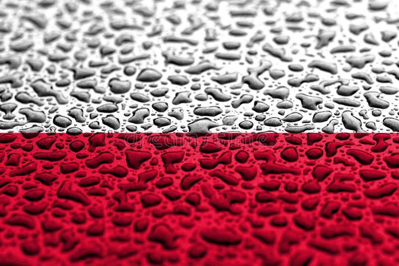 Flaga pa?stowowa Polska zrobi? wodne krople T?o prognozy poj?cie fotografia royalty free