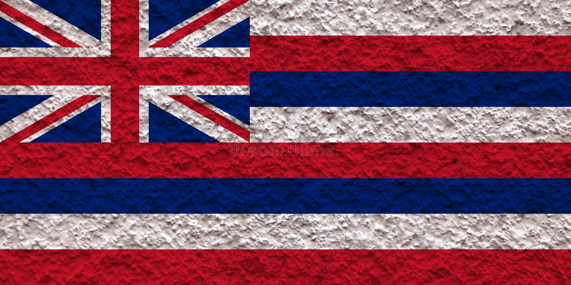 Flaga państowowa stan usa Hawaje wewnątrz przeciw szarej ścianie z kamienistą powierzchnią w dzień niezależności w kolorze błękit ilustracja wektor