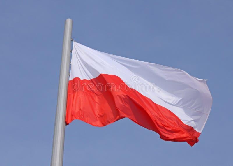 Flaga Polska zdjęcie stock