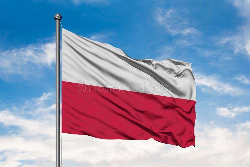 Flaga Polska falowanie w wiatrze przeciw białemu chmurnemu niebieskiemu niebu flaga shine fotografia royalty free