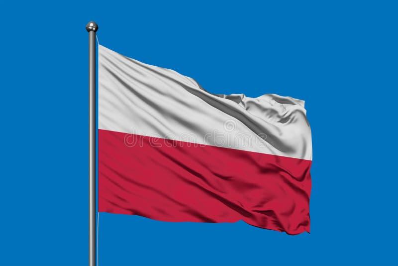 Flaga Polska falowanie w wiatrze przeciw głębokiemu niebieskiemu niebu flaga shine zdjęcia royalty free